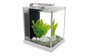 Fluval Led Aquarium Kit for Betta Fish