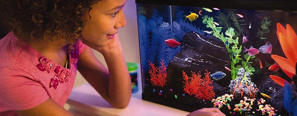 Girl looking at the aquarium