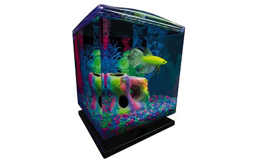 GloFish Bettas Aquarium Kit