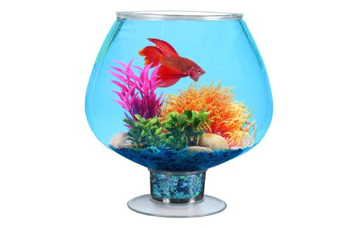Koller Products Impact Resistant Plastic Fish Bowl