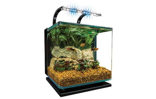 MarineLand Betta Fish Tank with Rail Light